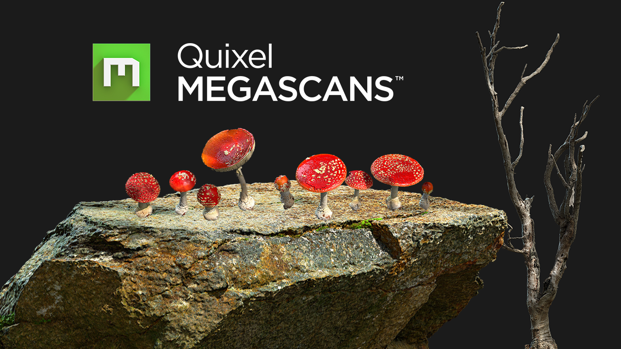 Quixel Megascans 2018 Free Pack