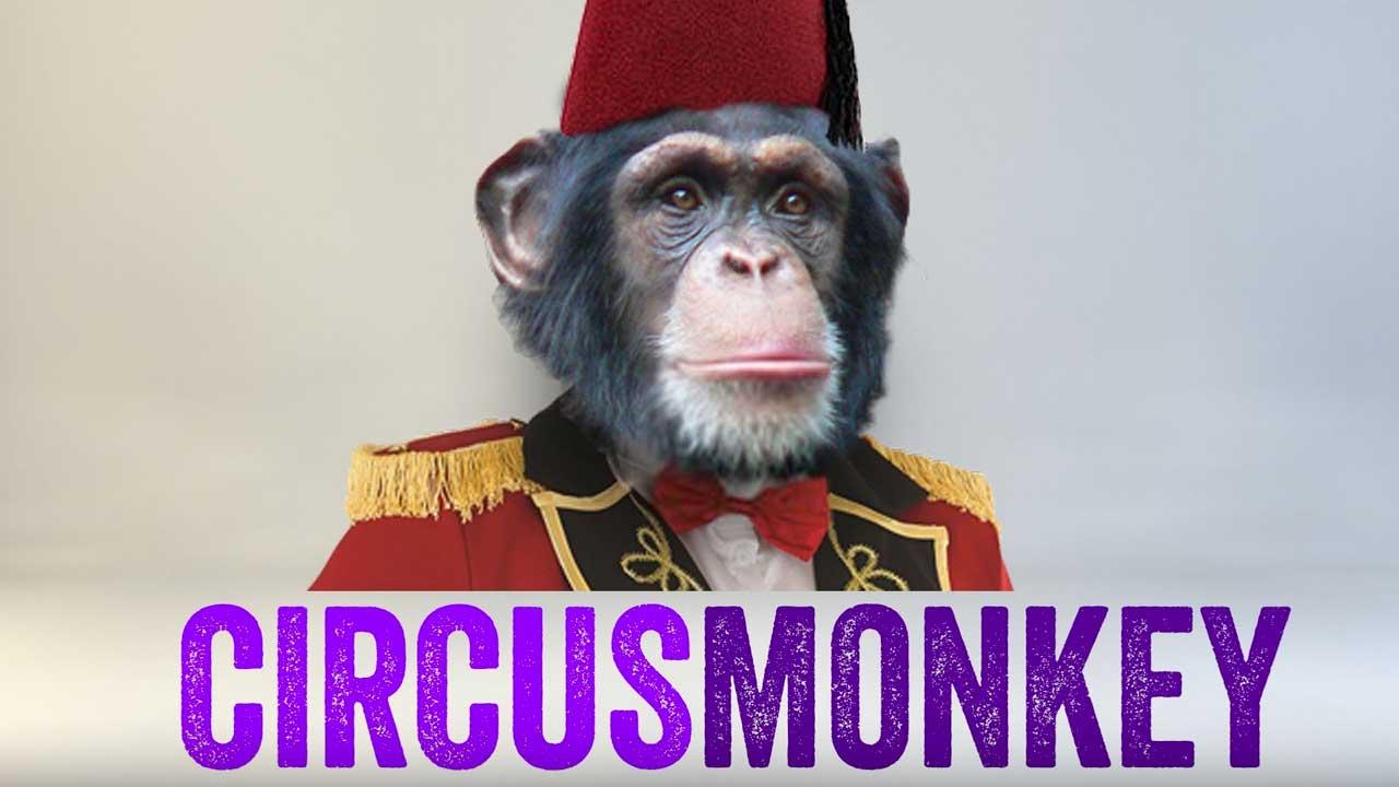 Ebberts + Zucker CircusMonkey Tutorial
