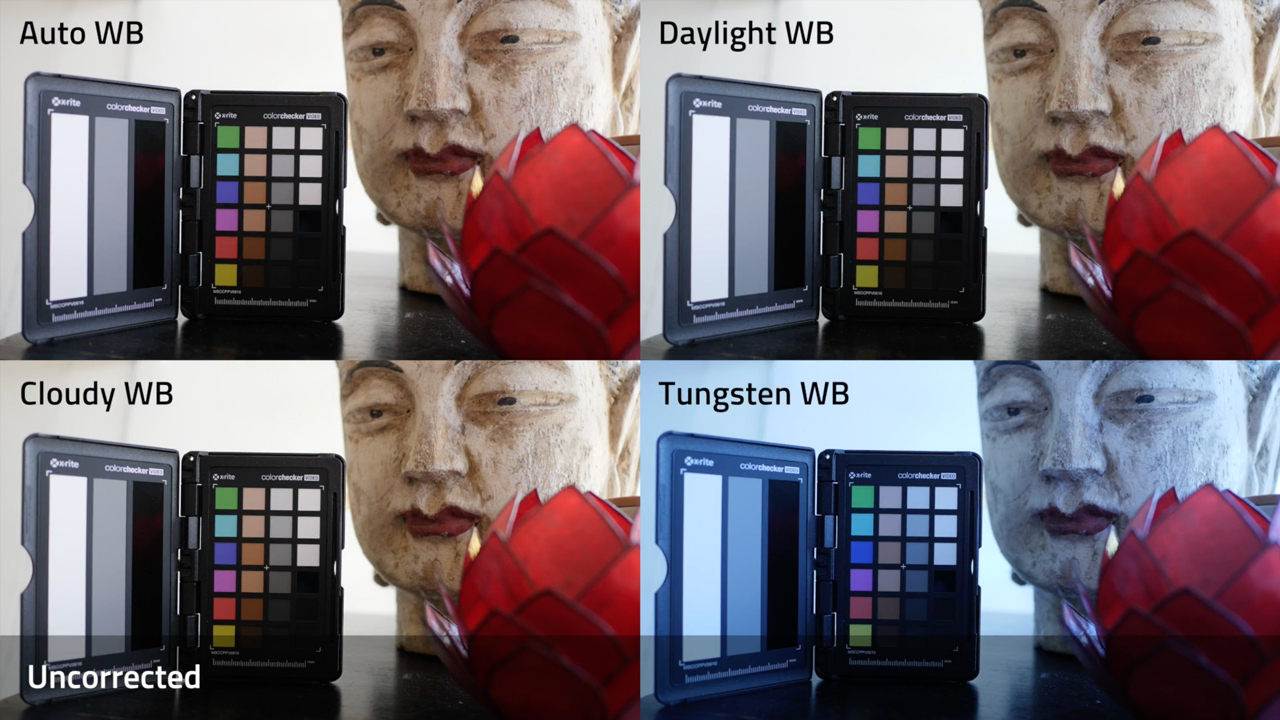 Coremelt Chromatic: Balancing Shots with the new XRite Color Checker