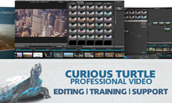 New: Curious Turtle Film Wash Color Effects for DaVinci Resolve Vol. 4