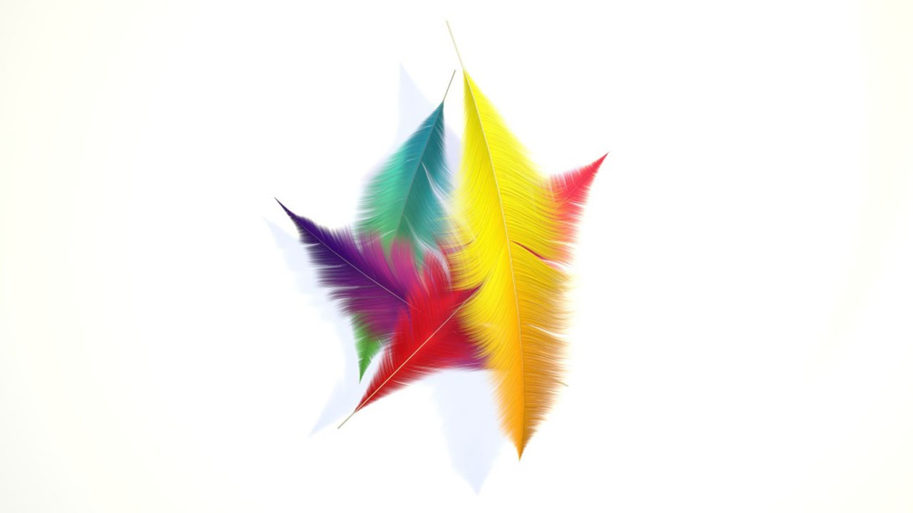 How to Create Colorful Feathers in Cinema 4D