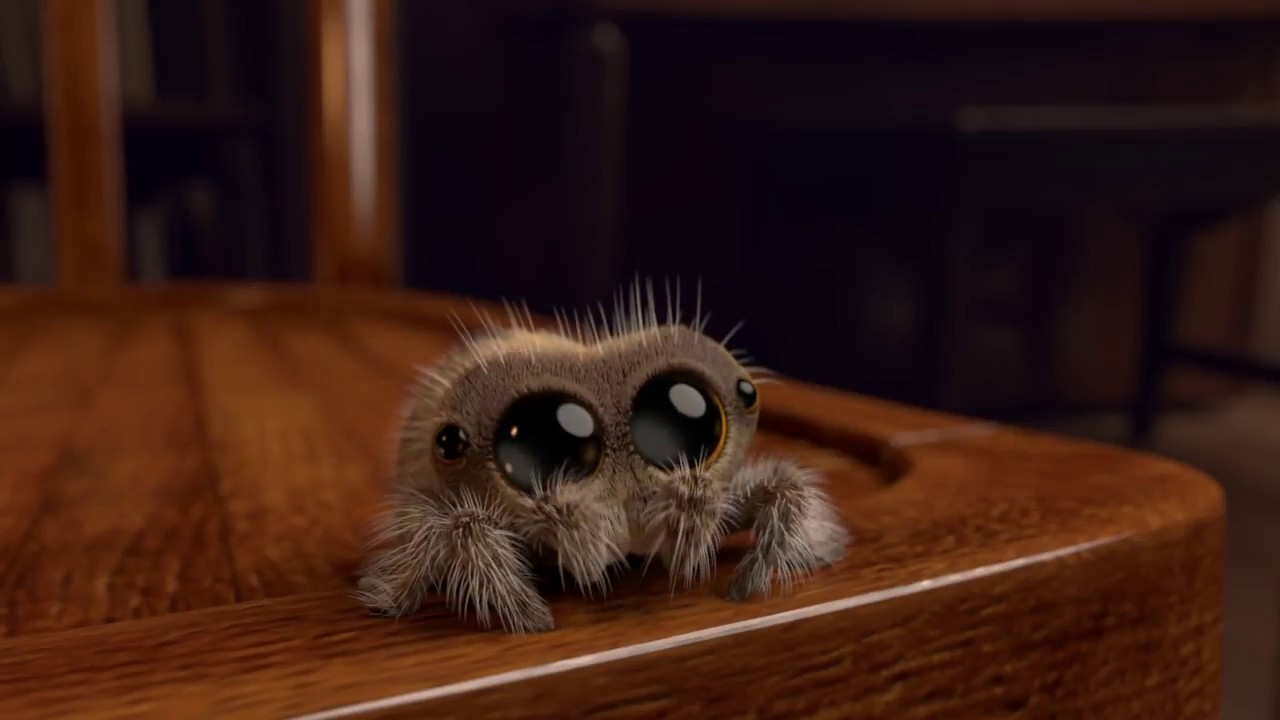 Midweek Motivations: Lucas the Spider / Joshua Slice
