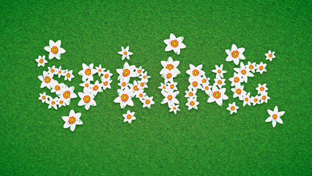 Daffodil Text Effect for Spring