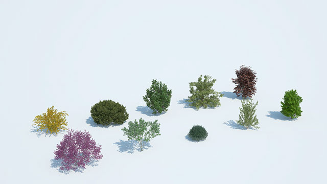 Laubwerk Plants Kit 8 - Temperate Shrubs and Bushes - Toolfarm