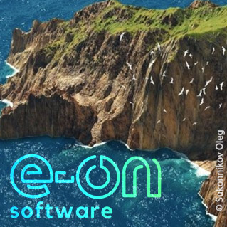 e-on Software