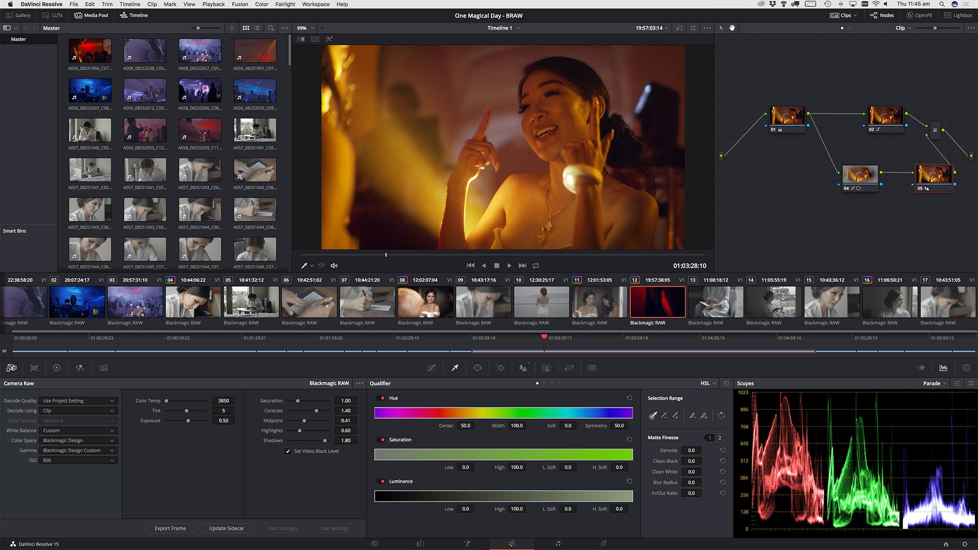 Davinci Resolve Screen shot