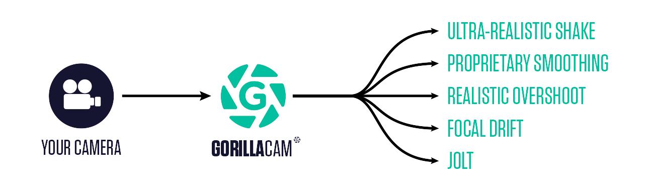 gsg gorillacam workflow