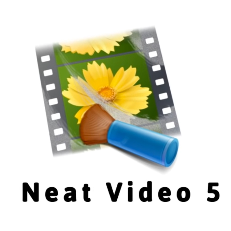 ABSoft Neat Video Pro