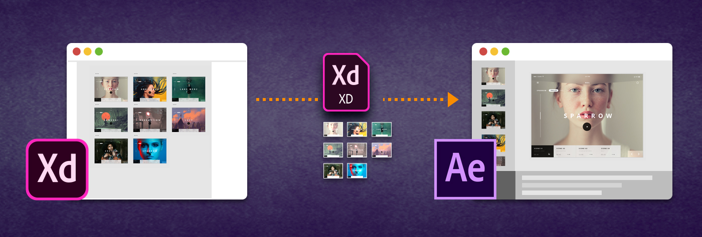 Adobe After Effects CC for Teams & Businesses - Toolfarm