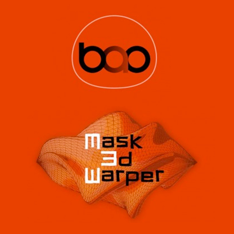 BAO Mask 3D Warper