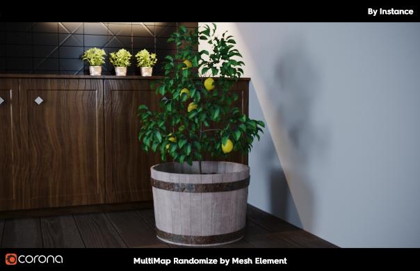mesh element