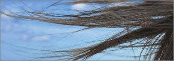 robuskey single strand of hair