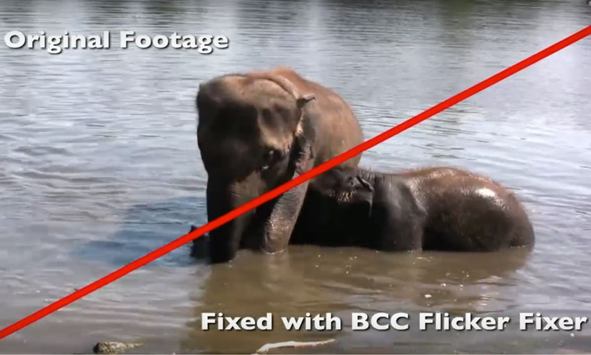 Repair Video with BCC Flicker Fixer