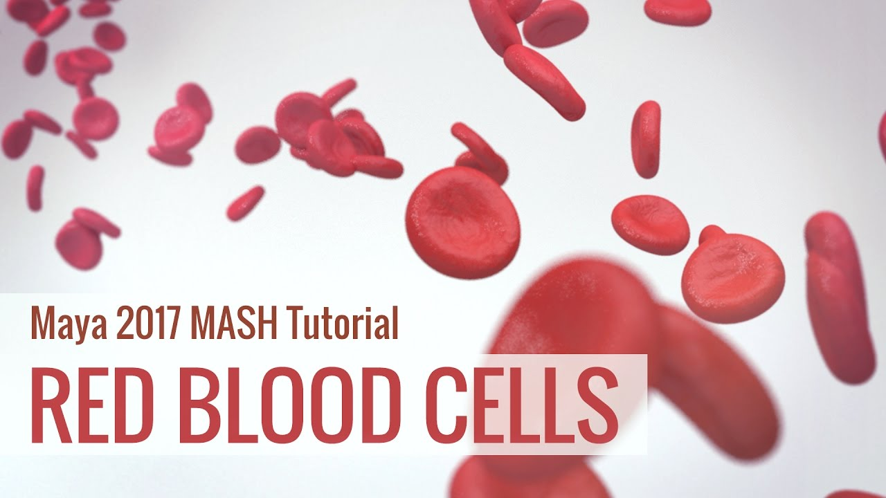 Medical Animation Tutorial: Red Blood Cell Animation using Maya 2017 MASH Motion graphics