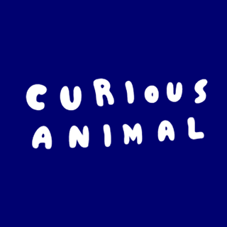 curious animal black friday 2017